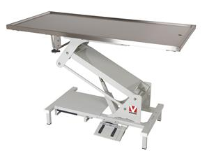 Electric Dog Table With Stainless Steel