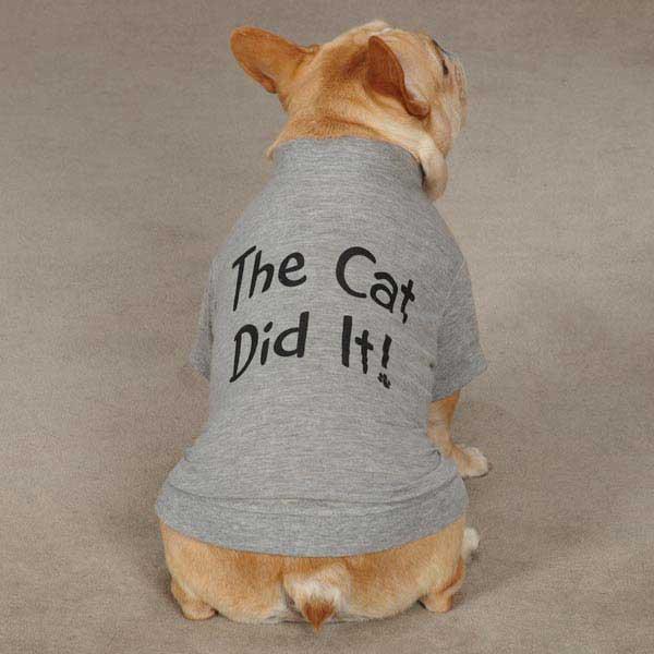 Dog Apparel Attitude