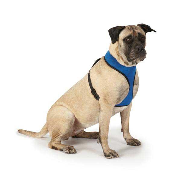 Mesh Dog Harnesses