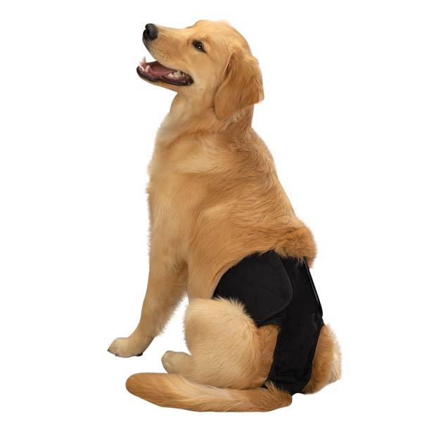 Male Pup Pants & K-9 Wraps