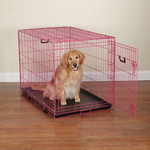 Dog Crate Appeal Foldable Crate - Pink Punch
