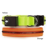 Zack & Zoey LED Dog Collars - Fluorescent Yellow