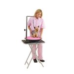 Master Equipment Small Pet Grooming Table - Pink Top