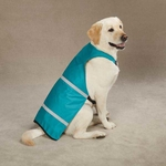 Safety Vests for Dogs - Brite blue (Medium)