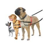 Haltic Non-Pul Dog Harness