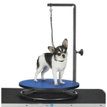 Master Equipment Small Pet Grooming Table - Blue Top