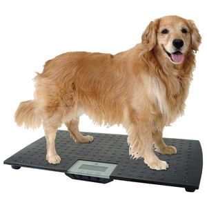 Petsters Precision Digital Pet Scales
