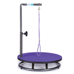 Master Equipment Small Pet Grooming Table - Purple Top