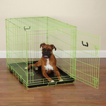 Dog Crate Appeal Foldable Crate - Lime  (6 sizes)