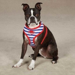 Beachcomber Dog Harnesses - Blue/Red
