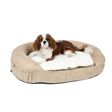 Petsters Orthopedic Memory Foam Beds - Beige - Medium