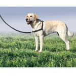 Premier Easy Walk Dog Harness - Black