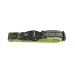 Hurtta Outdoors Padded Collar - Birch