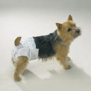 ClearQuest Disposable Doggy Diapers - 10 Pack