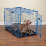 Dog Crate Appeal Foldable Crate - Blue Splash