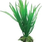 Cyperus Hobby Plastic