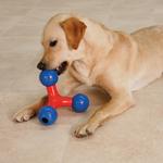 Zanies Puzzle Station Toys + 1 Ball