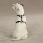 GG Camo Harnesses for Dogs - Black - Medium