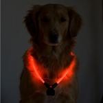 Wolters Nightshift Dog Collar - Purple