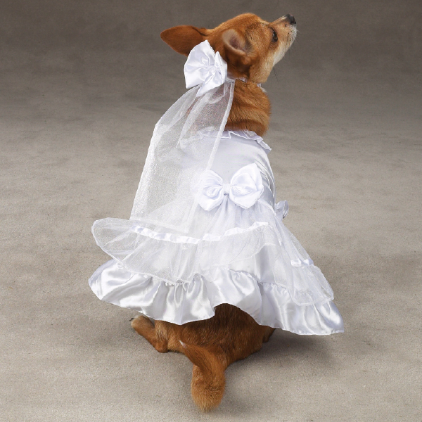 Petster No Petsters Yappily Ever After Dog Wedding Gown
