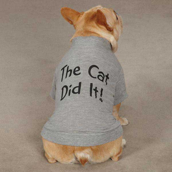 Hundeklær billig